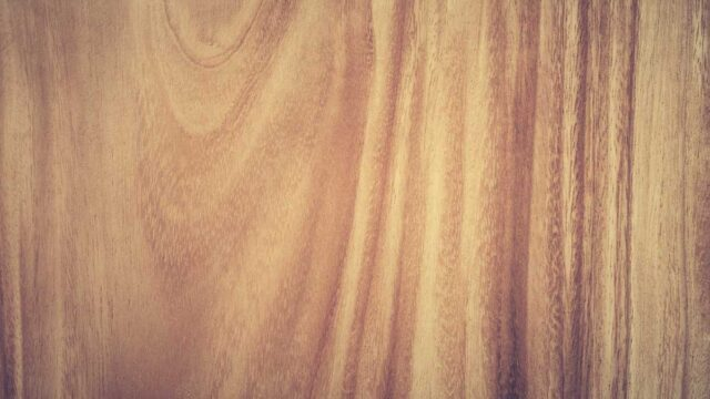 木目と杢目の違い